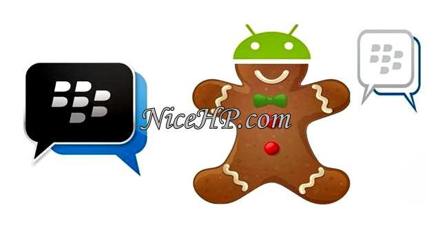 Download dan Cara Instal BBM Untuk Gingerbread